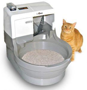 CatGenie Litter Box