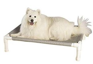 Petedge Dog Bed